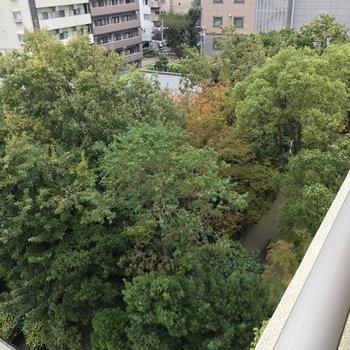 エレベーター前からは楽水園が見下ろせます。