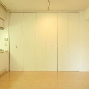 クローゼットたくさん ※写真は4階の同間取り別部屋のものです。