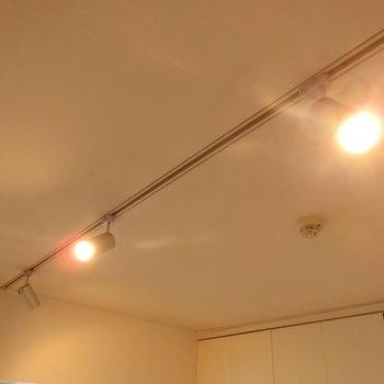 スポットライト ※写真は4階の同間取り別部屋のものです。