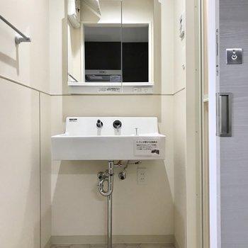 サニタリー。鏡の後ろは収納に。洗面台の下には猫トイレも置けますよ!※写真は2階の同間取り別部屋のものです
