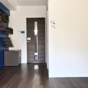 猫のことを考えた、面白いお部屋。※写真は2階の同間取り別部屋のものです