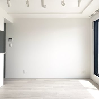 真っ白な壁をバックに観葉植物も映えるだろうなあ〜※写真は5階の反転間取り別部屋のものです