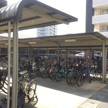 駐輪場もかなーり広い!家族一人ひとり自転車持てますね。