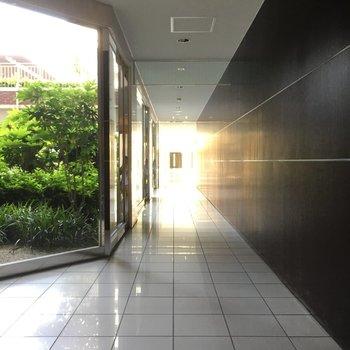 1階部分にながーい共用廊下がありました。