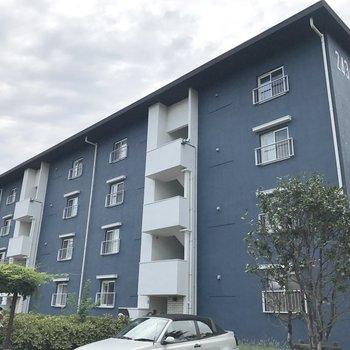 こちらの建物だけ外観が青いんです!※写真は前回募集時のものです