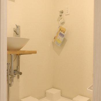 玄関入ってすぐの扉を開けるとサニタリー※写真は1階の反転間取り別部屋のものです
