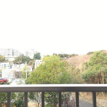 眺望は住宅街とお隣の森。