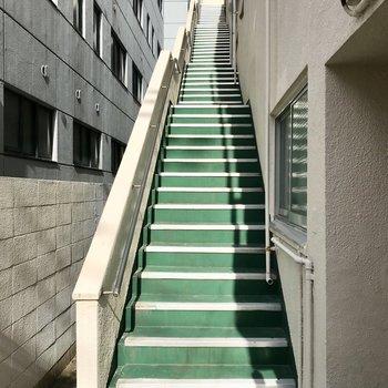 階段を登って3階まで。余裕っすよオッス!