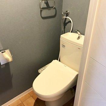 トイレの壁もいい色ね