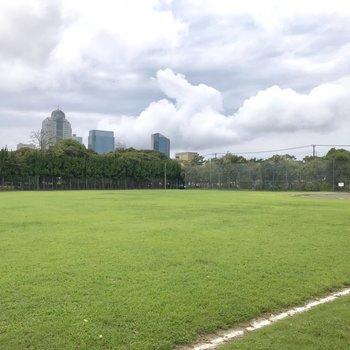 そして緑豊かな公園がありました。気持ちいいですね