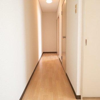 この細い廊下を行くと、