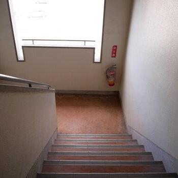 階段もレトロ。開口がかわいい