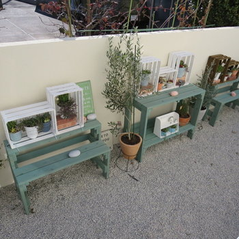 お庭には植物など置きたい