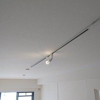 天井にはライティングレールも◎(リビングのみ)