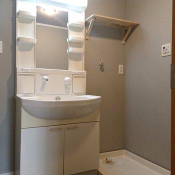 脱衣所にはシャワードレッサー付きの洗面台