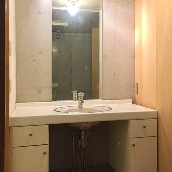 大きくて広い洗面台は気分もあがる(※写真は同間取り別部屋、清掃前のものです)