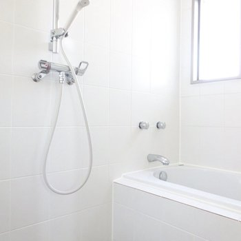 バスルームはまるで外国。