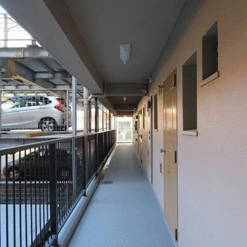 築古のわりには綺麗な廊下でした