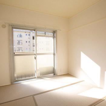 こちらは玄関横の和室。明るいですね!