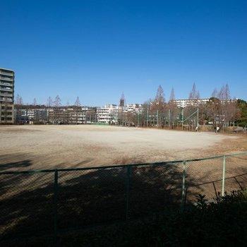 この公園にも、テニスコートや運動場がありますよ。