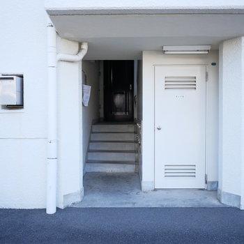 こちらの階段を上がります