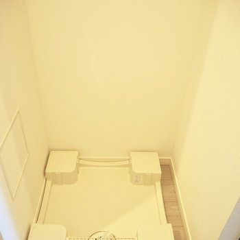 洗濯機は玄関入ってスグ※写真は10階の同間取り別部屋のものです
