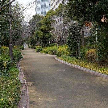 桜ノ宮駅までずっと緑道が続きます。