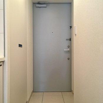 玄関ドアはうすーいブルーグレー。