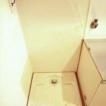 玄関とキッチン横に洗濯機置場。洗濯機パン付きで安心◎