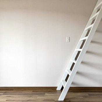 意外にのぼりおりが怖くなかったはしご。それではロフトへGO〜!