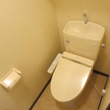 トイレはこじんまりとしています