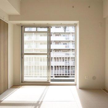 和室の窓辺は昼間ボカポカですよ。