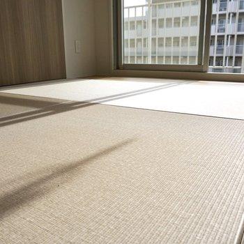 畳に寝転がりたい。。。和紙畳なので手入れが簡単なのも嬉しい。