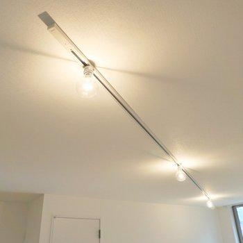 照明はライティングレールですよ〜。