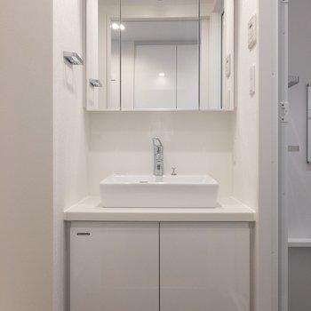 鏡の中が収納になっています。 ※写真は2階の同間取り別部屋のものです。