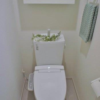トイレ収納もありますね!