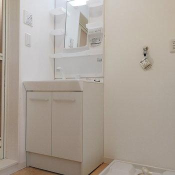 脱衣スペースもしっかりありつつ、洗面台と洗濯機を配置。