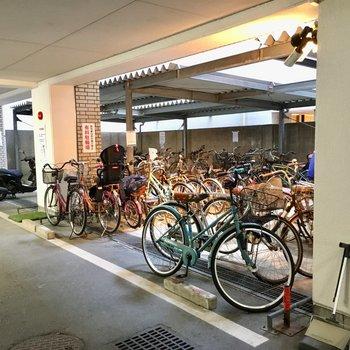 駐輪場には自転車いっぱい。
