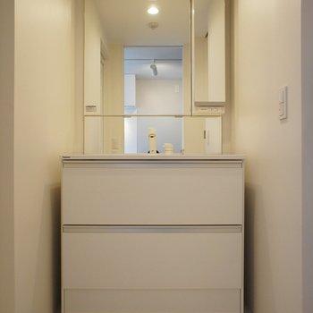 洗面台、おっきいですね~!!※写真は2階同間取り別部屋のものです