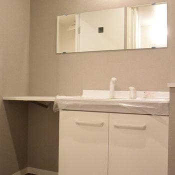 洗面台はカウンタースペースあり