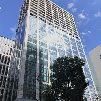 オフィスビルのような外観、緑とともに