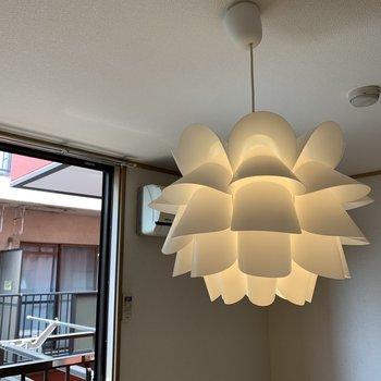 【洋室】照明ですね。デザイナーズ物件にありそうなあれです、存在感。取り外し可能ですよ〜