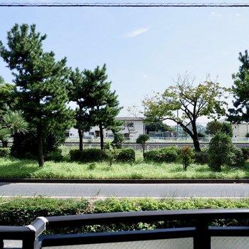 目の前には、川沿いの綺麗な緑が広がります。