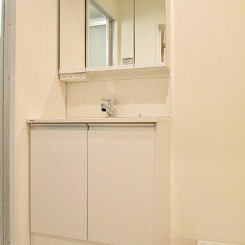 向かいは洗面台付の脱衣所です。