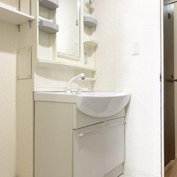 洗面台隣の棚は洗剤などを収納しておこう。(※写真は清掃前のものです)