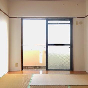 こちらは6帖の和室。畳は表替えをしますよ〜!