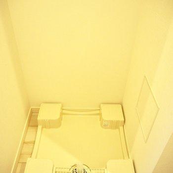 洗濯機は玄関入ってスグ※写真は3階反転間取り別部屋のものです