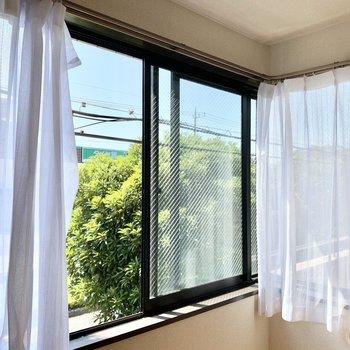 窓から木の緑がよく見えます。