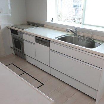 大きなシステムキッチンにはグリルにオーブンに食洗機と贅沢すぎる設備付きです