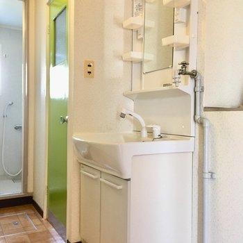 洗面台はファミリーサイズ。